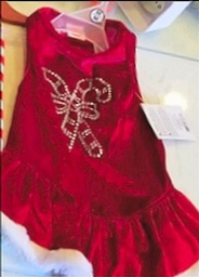 Beautifu Red Velvet Dress - M